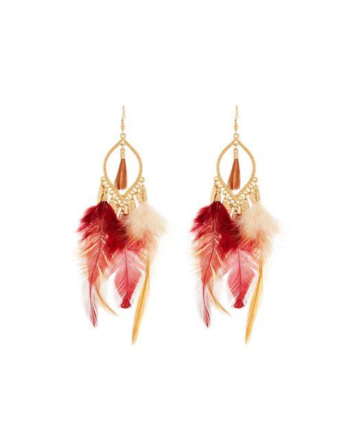 Panacea   Brown Feather Dangle Earrings   Lyst