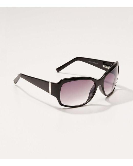 LOFT - Black Tortoiseshell Print Square Sunglasses - Lyst