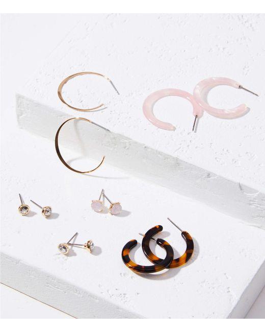 LOFT Metallic Resin Stud & Hoop Earring Set