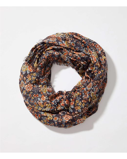 LOFT - Multicolor Floral Infinity Scarf - Lyst