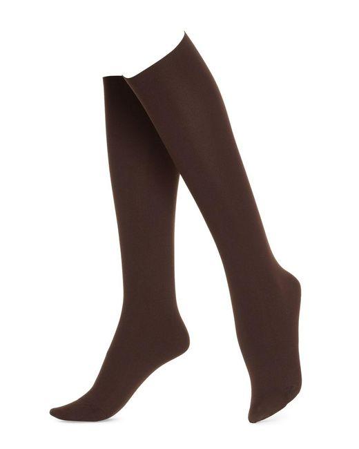 Hue | Brown No Band Knee High Socks | Lyst