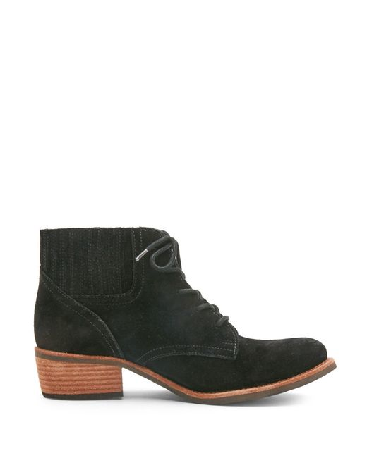 Matisse | Black Vinny Suede Lace-up Ankle Boots | Lyst