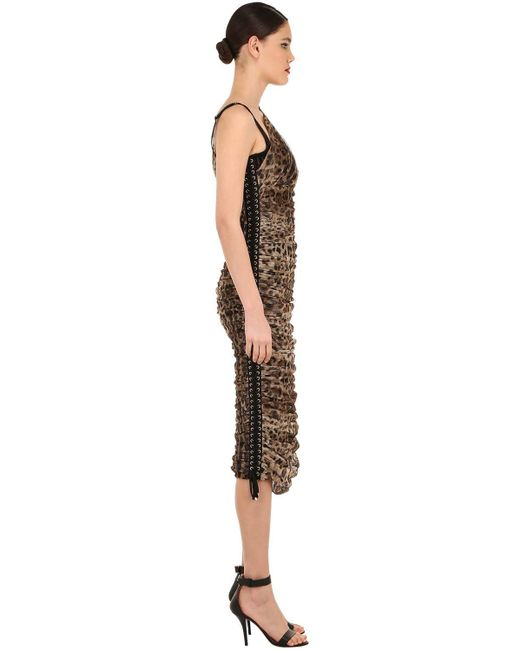 Платье Из Тюля Стретч Dolce & Gabbana, цвет: Brown