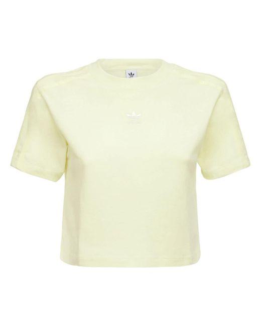 Adidas Originals クロップドコットンtシャツ Yellow