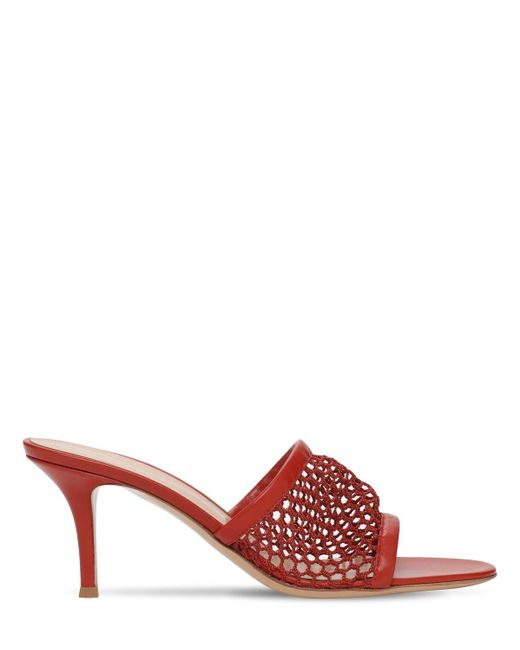 Gianvito Rossi メッシュ&レザーミュール 70mm Red