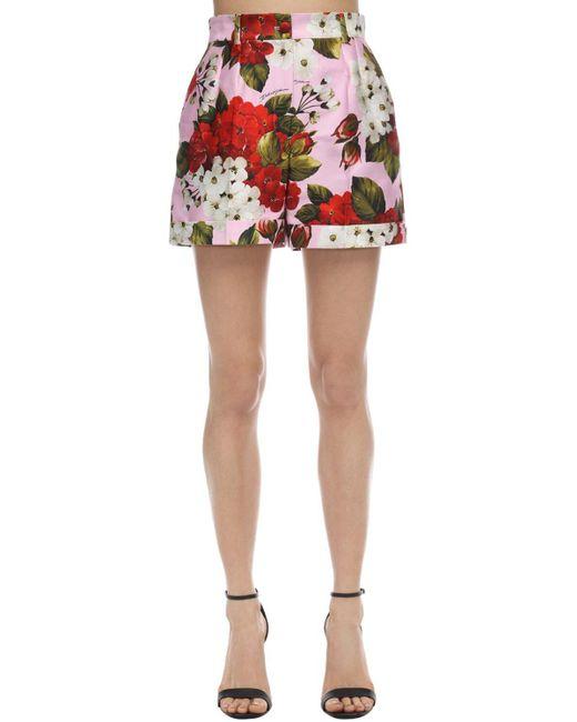 Dolce & Gabbana ハイウエストポプリンショートパンツ Multicolor