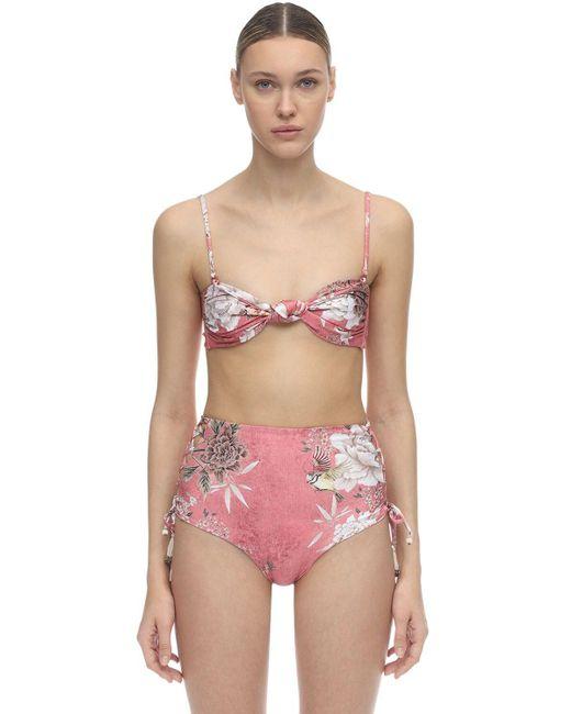 Agua Bendita Women's Pink Lucille Madame Floral Print Bandeau Top