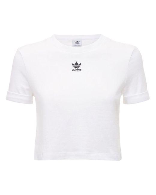 Adidas Originals クロップトップ White