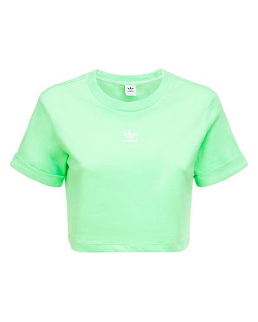 Adidas Originals クロップドtシャツ Green