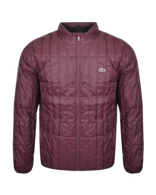 Lacoste Purple Packable Down Jacket Burgundy for men