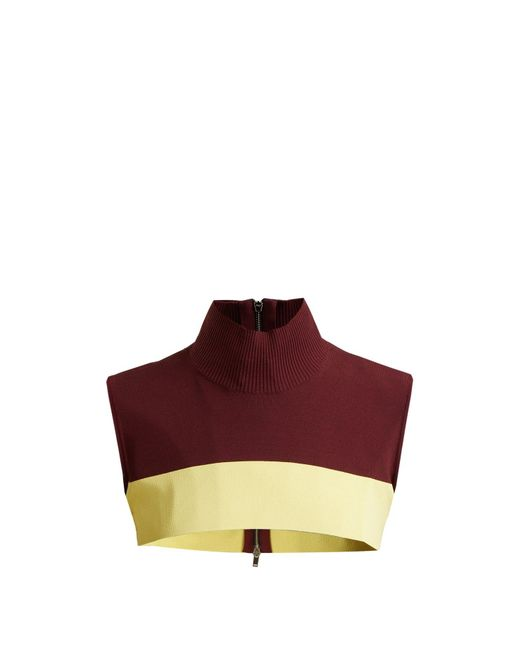Colville Multicolor Cropped Sleeveless Sweater