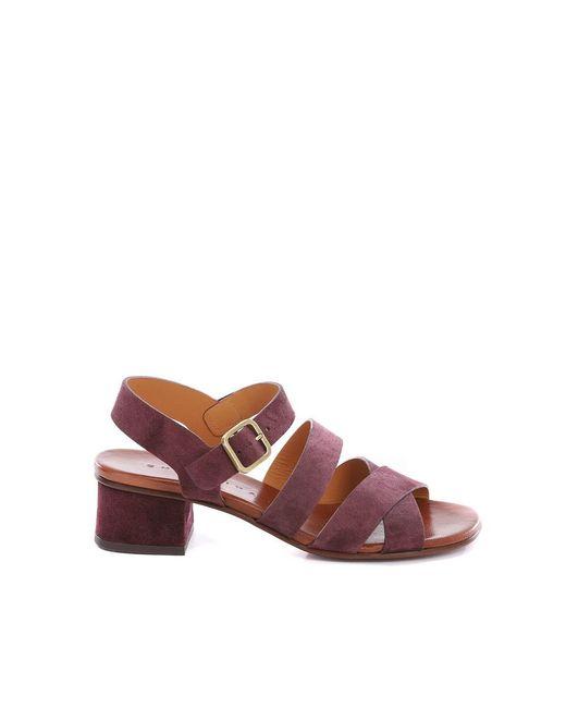 Chie Mihara Yaris Sandals in het Multicolor
