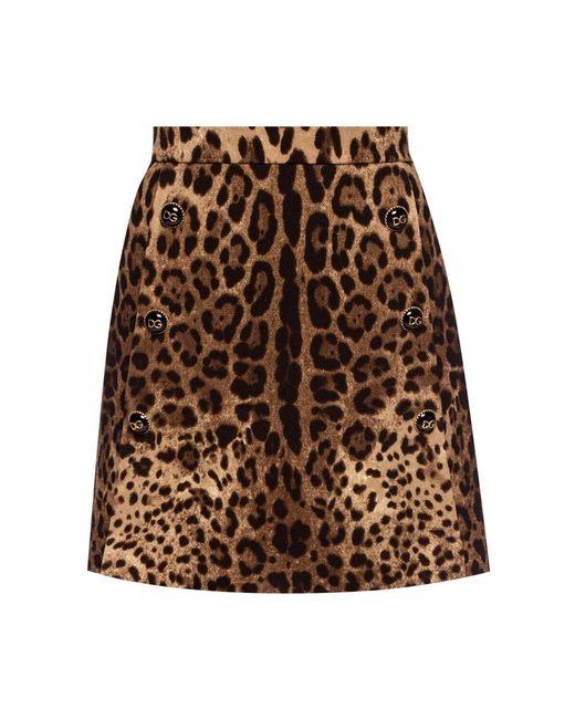 Dolce & Gabbana Luipaard Gedrukte Jas in het Brown