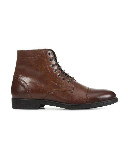 Geox Shoes in Brown für Herren