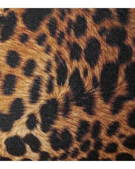 Melissa Odabash Women's Cancun Cheetah Bikini Top