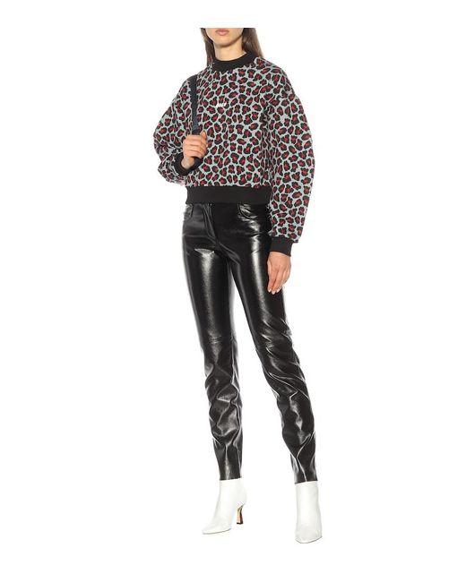 Felpa a stampa leopardo in cotone di MSGM in Black