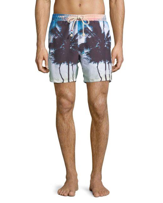 Sol Angeles - Blue Off Tropic Palm Tree Swim Trunks for Men - Lyst