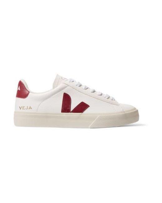 Veja White + Net Sustain Campo Sneakers Aus Leder