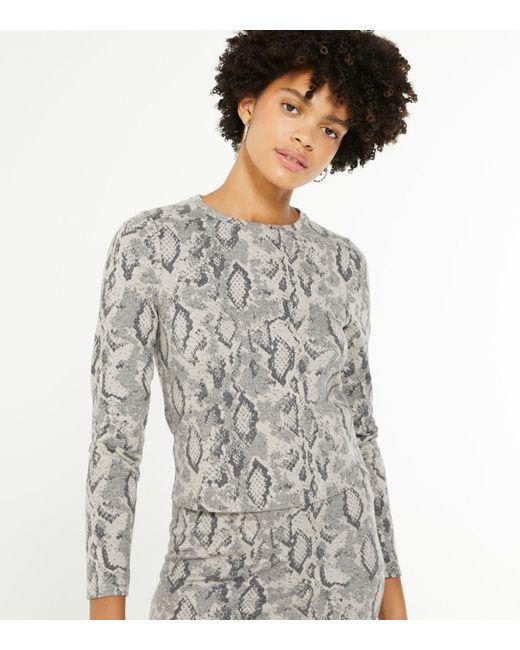 New Look Gray Light Grey Fine Knit Snake Print Top