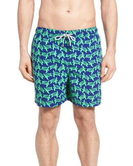 Tom & Teddy | Blue Turtle Print Swim Trunks for Men | Lyst