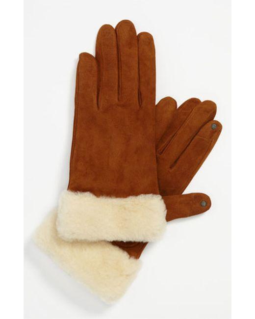 Ugg | Brown Ugg Australia 'kotah Shorty' Tech Gloves | Lyst