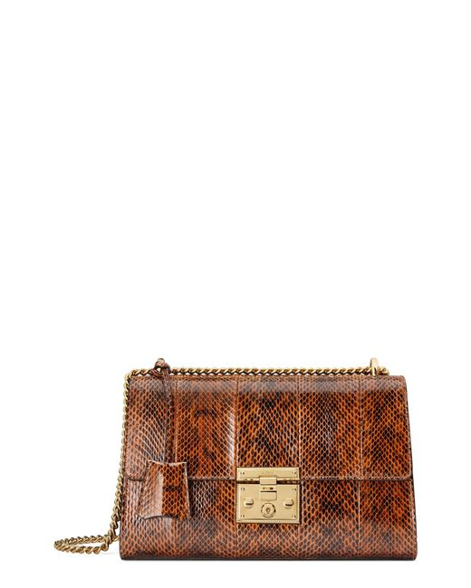 Gucci - Brown Medium Padlock - Elaphe Genuine Snakeskin Shoulder Bag - Lyst