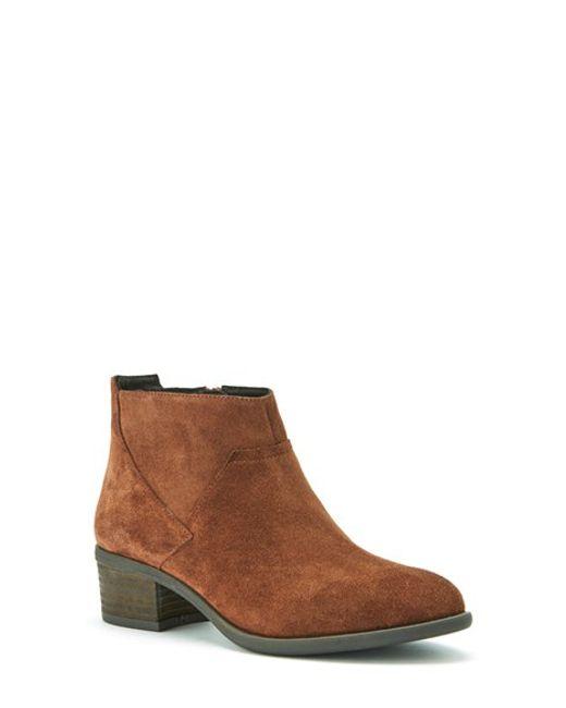 blondo maddie waterproof suede ankle boot in brown