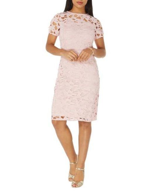 Dorothy Perkins   Pink Lace Sheath Dress   Lyst