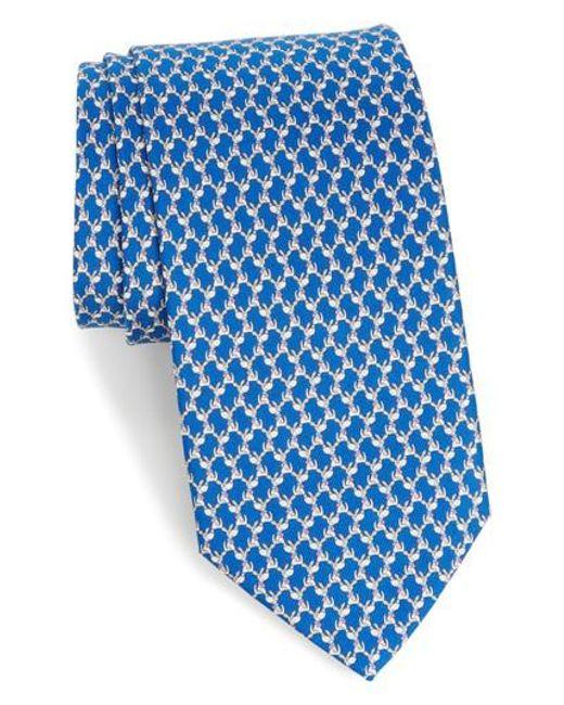 Ferragamo   Blue Riccardo Dog Print Silk Tie for Men   Lyst
