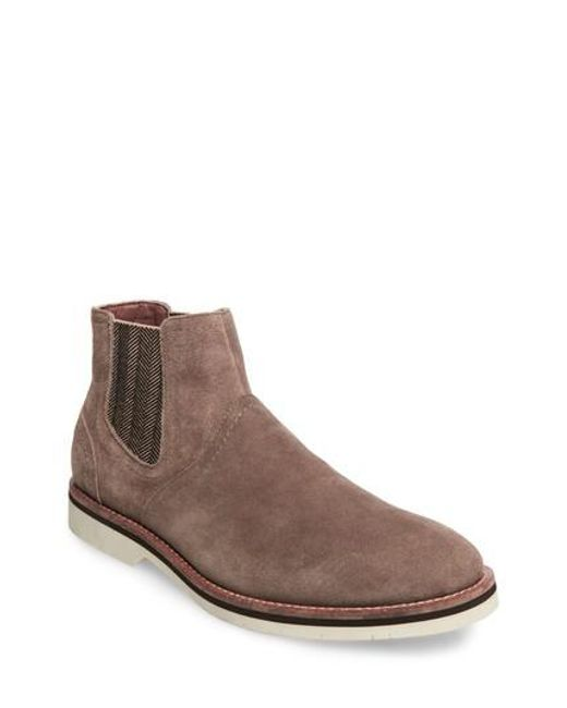 Steve MaddenSAINE - Classic ankle boots - taupe RD3O0yrVER