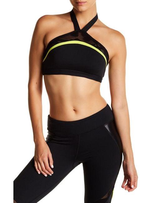 Trina Turk | Black Lace & Shine Halter Sports Bra | Lyst
