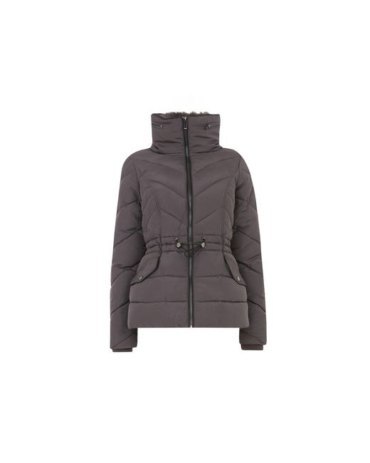 Oasis Gray Luxe Short Padded Jacket