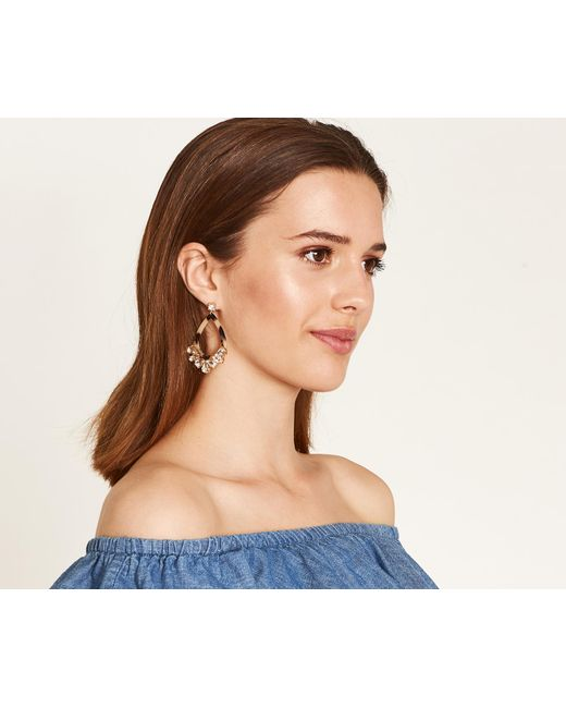 Oasis - Brown Tortoiseshell Earrings - Lyst