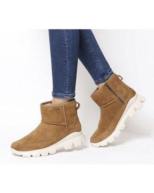 02dd9ec6fb4 Women's Brown Palomar Sneaker