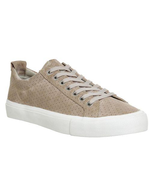 Pointer   Brown Seeker Lo Sneakers for Men   Lyst