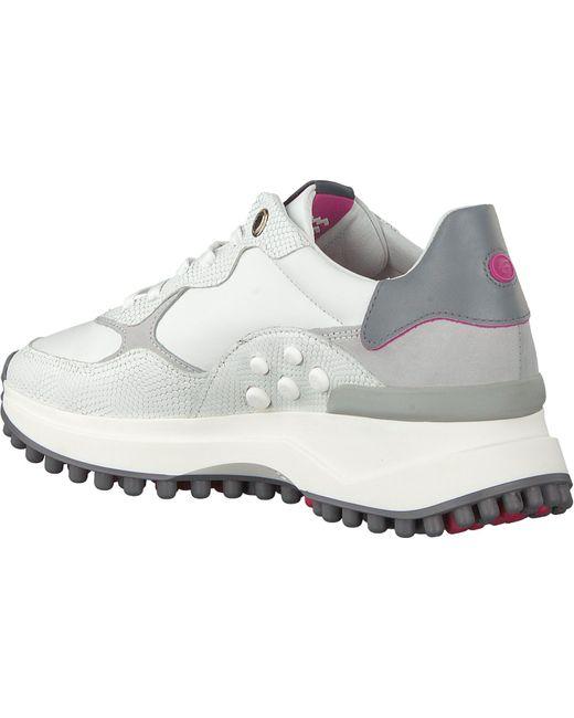 Floris Van Bommel Witte Lage Sneakers 85307 in het White