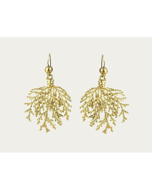 Mor | Metallic Bronze Coral Earrings | Lyst