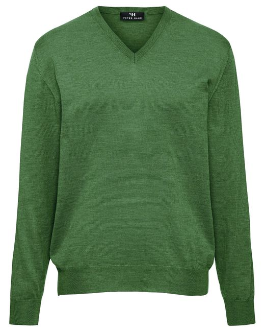 Le pull col v 100% laine vierge taille 46 Peter Hahn pour homme en coloris Green