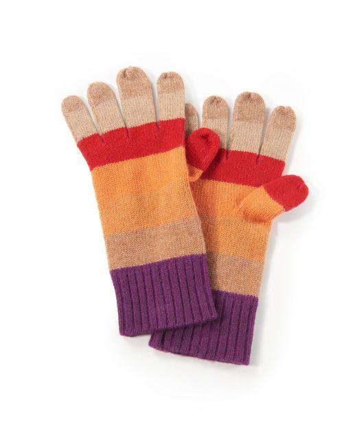 include Multicolor Handschuh