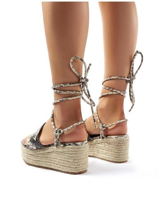 0a63fb6203f Women's Brown Calypso Snakeskin Suede Lace Up Espadrille Flatform Sandals