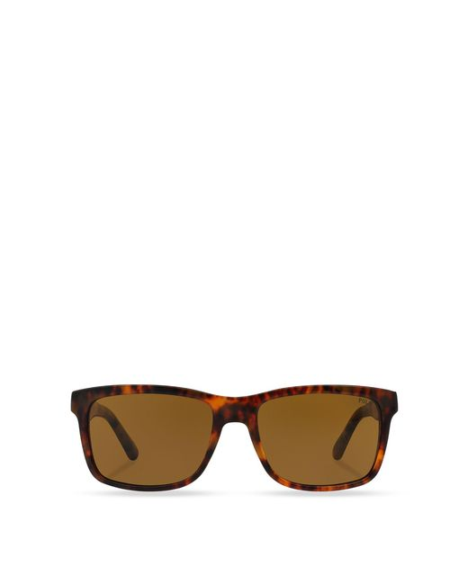 Polo Ralph Lauren - Brown Square Sunglasses for Men - Lyst