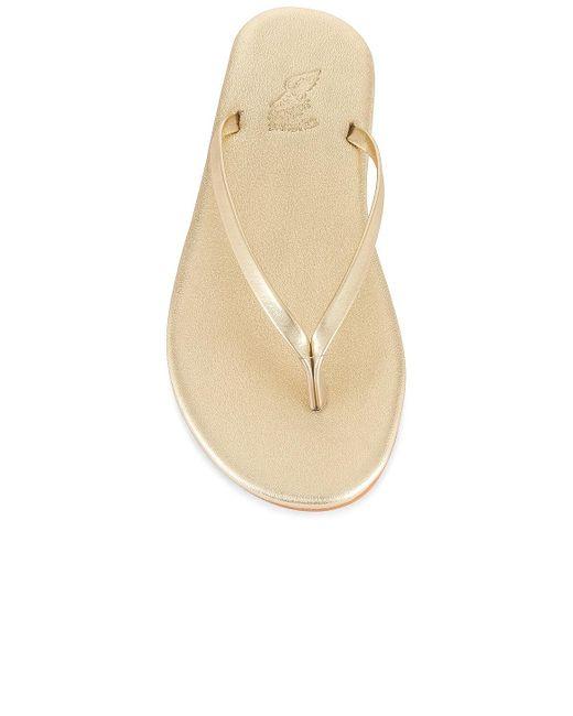 Ancient Greek Sandals Saionara サンダル Multicolor