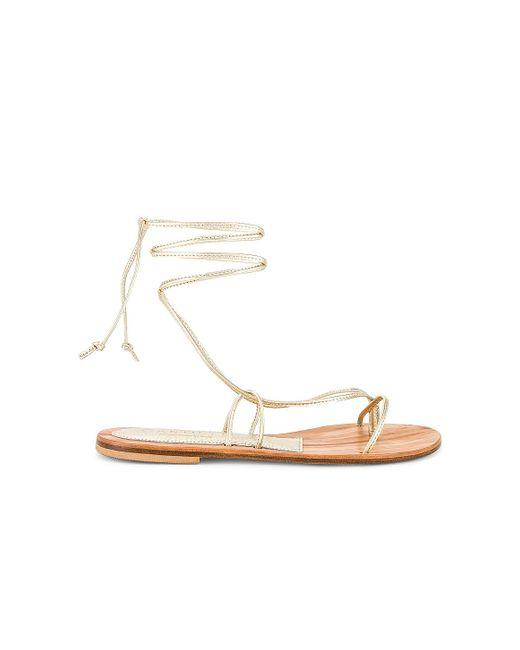 Cornetti Metallic Ermi Lace Up Sandal