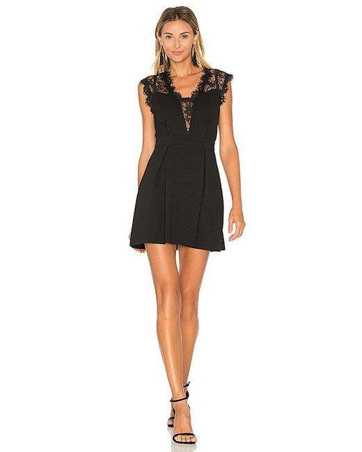 BCBGeneration Black Lace Inset Dress