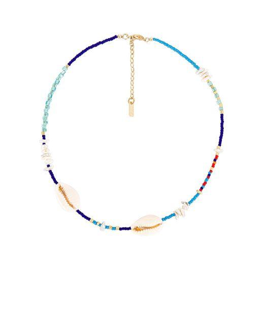 Чокер Shelbourne В Цвете Мульти Joolz by Martha Calvo, цвет: Multicolor