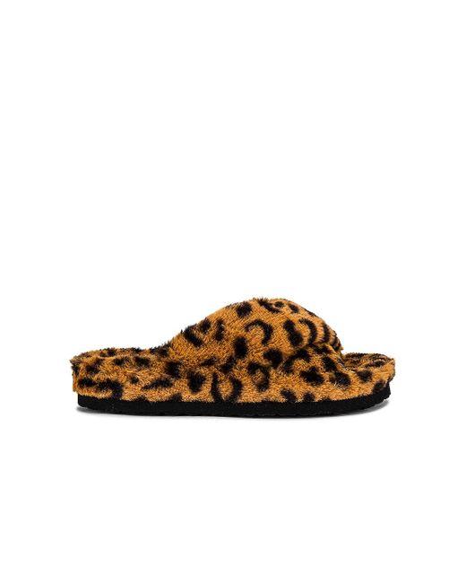 Тапочки Fuzed В Цвете Леопард Steve Madden, цвет: Brown
