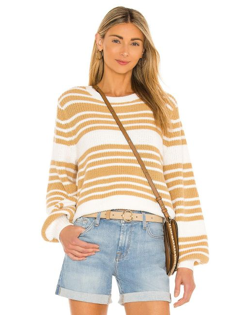 Seafolly セーター Multicolor