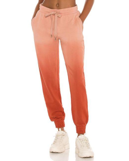 The Upside Alena パンツ Orange
