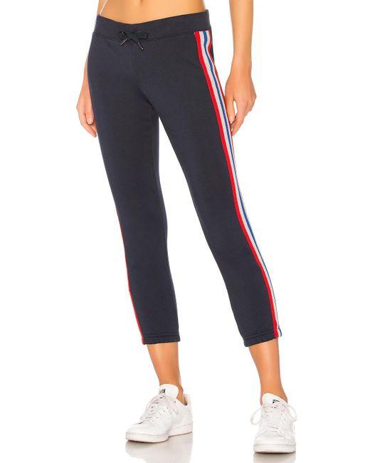 Pam & Gela - Blue Sweatpant With Bird Sport Stripes - Lyst