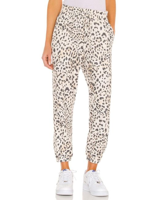 Sundry Leopard パンツ Natural